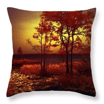 Moonlit Night Throw Pillow