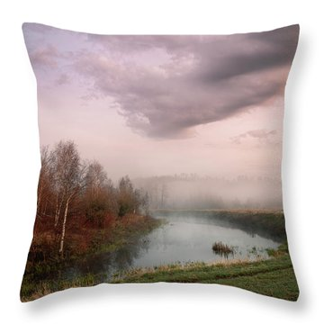 Morning By The Oxbow Throw Pillow