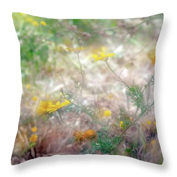 Morning Impressions Of Jaffa 2 Throw Pillow