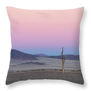 Morning In The Desert Throw Pillow