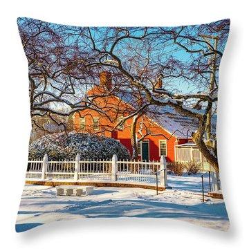 Morning Light, Winter Garden. Throw Pillow