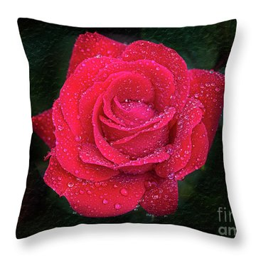 Morning Mist On Red Rose Throw Pillow