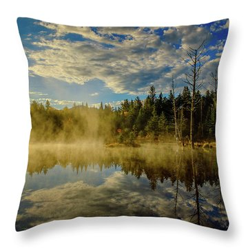 Morning Mist, Wildlife Pond  Throw Pillow