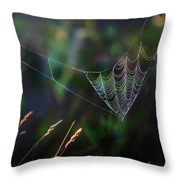 Throw Pillow featuring the photograph Morning Spider by Bill Wakeley