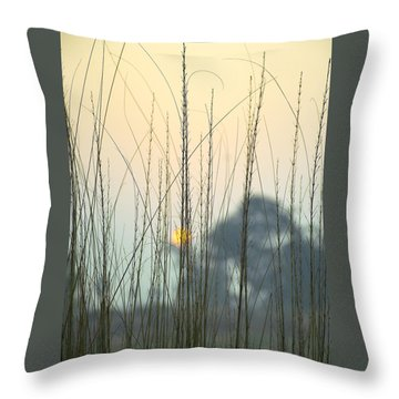 Morning Sun Throw Pillows