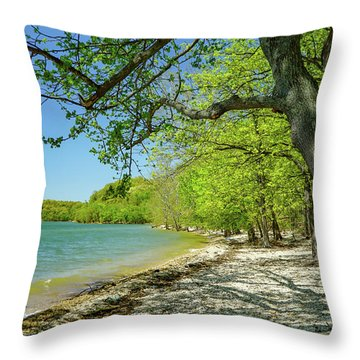 Moss Creek Beach Throw Pillow