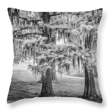 Moss Laden Trees 4132 Throw Pillow