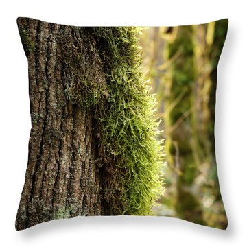 Throw Pillow featuring the photograph Moss On Bark by Whitney Goodey
