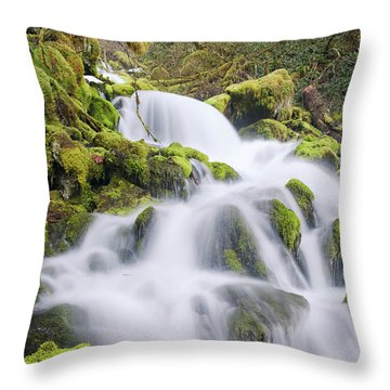 Mossy Falls Throw Pillow
