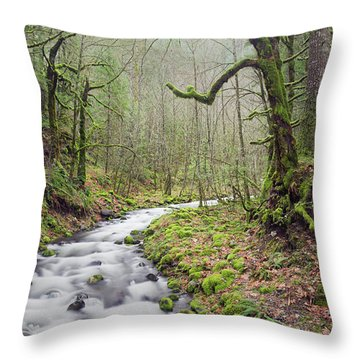 Mossy Landscape Throw Pillow