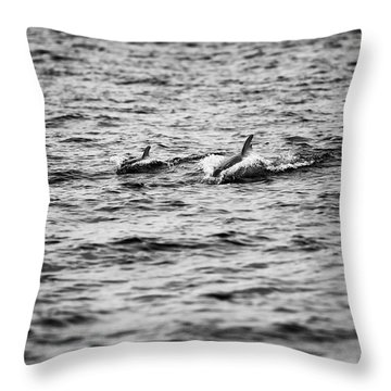 Mother Dolphin And Calf Swimming In Moreton Bay. Black And White Throw Pillow
