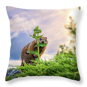 Mother Groundhog Fine Dining Throw Pillow