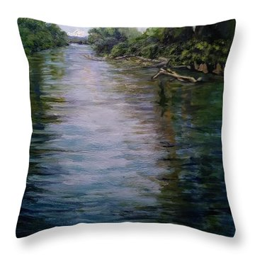 Mount Baker Peekaboo View From Lowell Riverfront Trail Throw Pillow