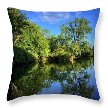 Throw Pillow featuring the photograph Mount Vernon Iowa by Dan Miller