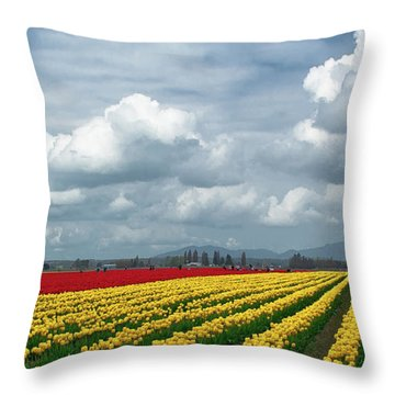 Mount Vernon Tulip Rows Throw Pillow