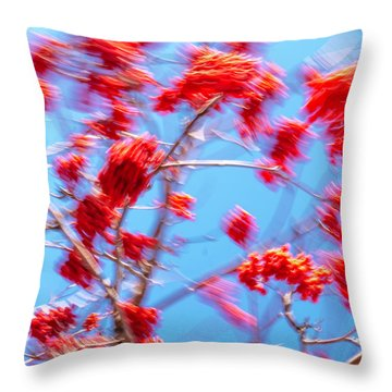 Mountain Ash Tree With Berries In Very Strong Wind Throw Pillow