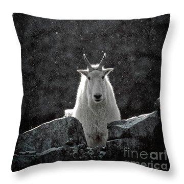 Throw Pillow featuring the photograph Mountain Goat by Brad Allen Fine Art