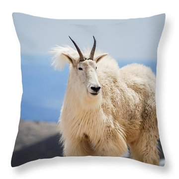 Mountain Goat Throw Pillow