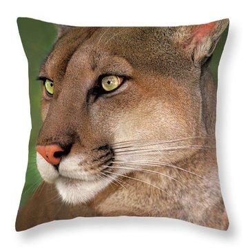 Mountain Lion Portrait Wildlife Rescue Throw Pillow