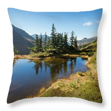 Throw Pillow featuring the photograph Mountain Pond by Tim Newton