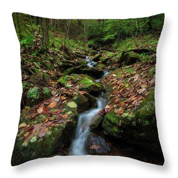 Mountain Stream - Blue Ridge Parkway Throw Pillow