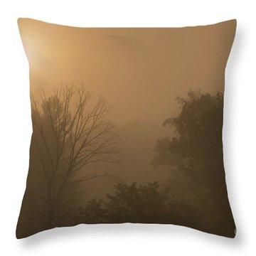 Mountain Sunrise Misty Morning Throw Pillow