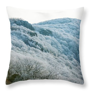 Mountainside Hoarfrost Throw Pillow