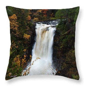 Moxie Falls Throw Pillow