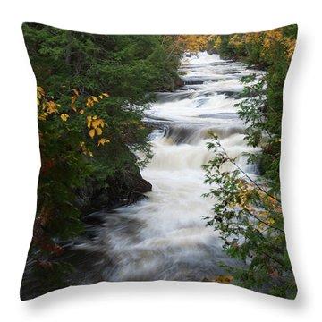 Moxie Stream Throw Pillow