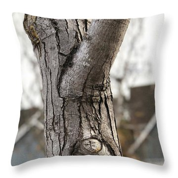 Throw Pillow featuring the digital art Mr. Skeptical  by Cindy Greenstein