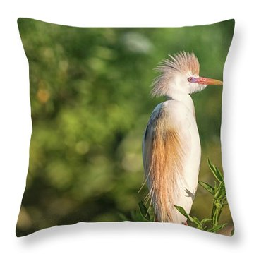 Mr. Sunshine Throw Pillow