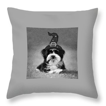 Throw Pillow featuring the photograph Mr. Wizard by Sue Collura