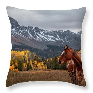 Mt Sneffles And Horse Throw Pillow