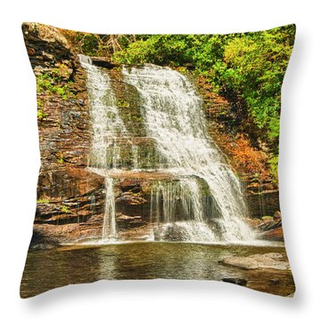 Muddy Creek Falls Throw Pillow