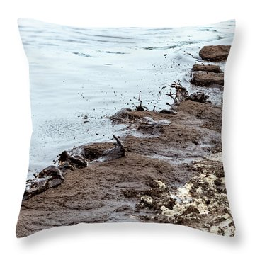 Muddy Sea Shore Throw Pillow