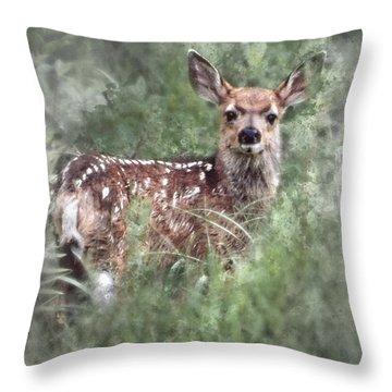 Mule Deer Fawn Throw Pillow