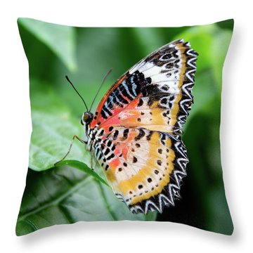 Multi Colored Butterfly Throw Pillow