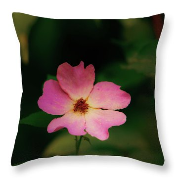 Multi Floral Rose Flower Throw Pillow