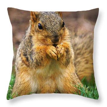 Munching Cute Fox Squirrel Throw Pillow