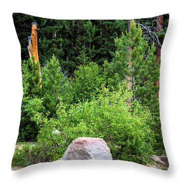 Throw Pillow featuring the photograph Murder Weapon by Jon Burch Photography