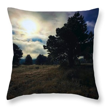 Throw Pillow featuring the photograph Murky Atmosphere Elk Meadow by Dan Miller