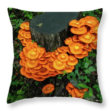 Throw Pillow featuring the photograph Musrhoom Halo by Lara Ellis