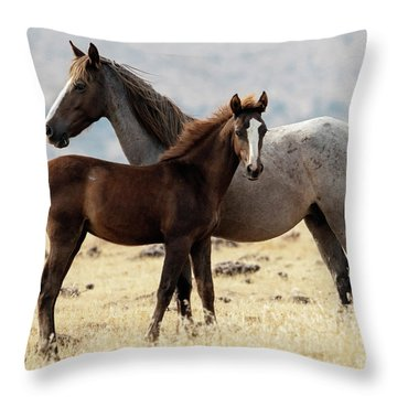 Mustang Colt And Mare Throw Pillow