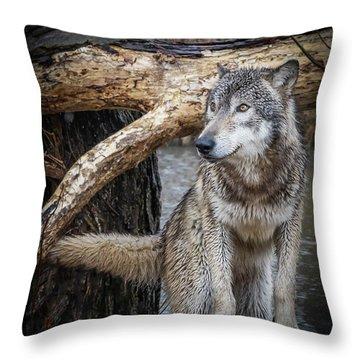 My Favorite Pose Throw Pillow