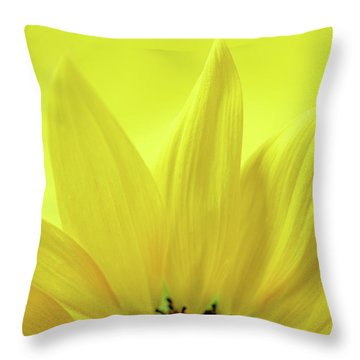 Throw Pillow featuring the photograph My Sunshine by Michelle Wermuth