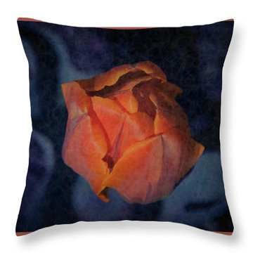 Mysterious Promise Throw Pillow
