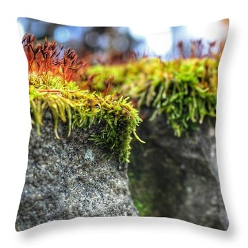 Nascent Throw Pillow