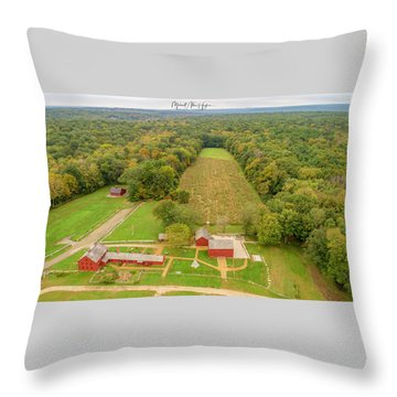 Throw Pillow featuring the photograph Nathan Hale Homestead by Michael Hughes