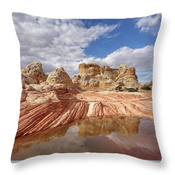 Natural Architecture Throw Pillow