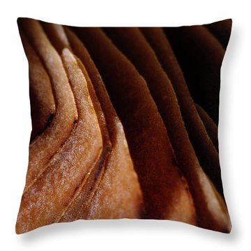 Natural Canyons Throw Pillow